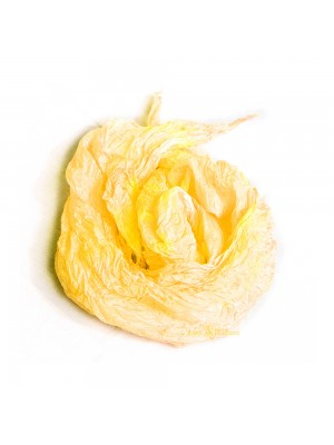 Pastel silk scarf shawl in yellow